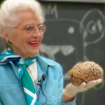 MY LOVE AFFAIR WITH THE BRAIN: The Life and Science of Dr. Marian Diamond (sample)