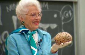Dr. Marian Diamond, brain, anatomy, Integrative Biology 131 - marian_brain_v4
