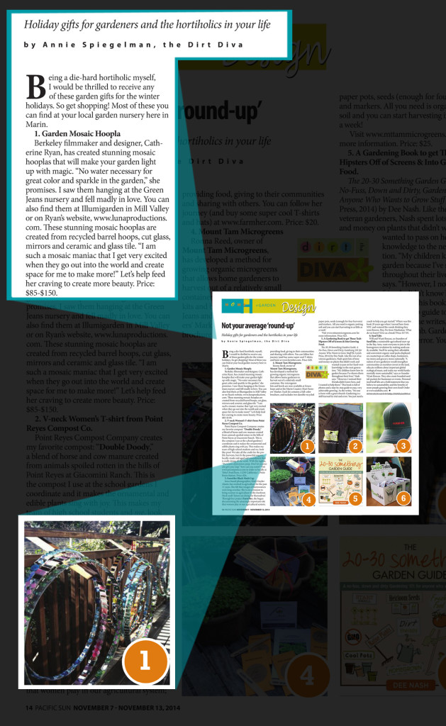 Hoopla Article enlarge_v2j