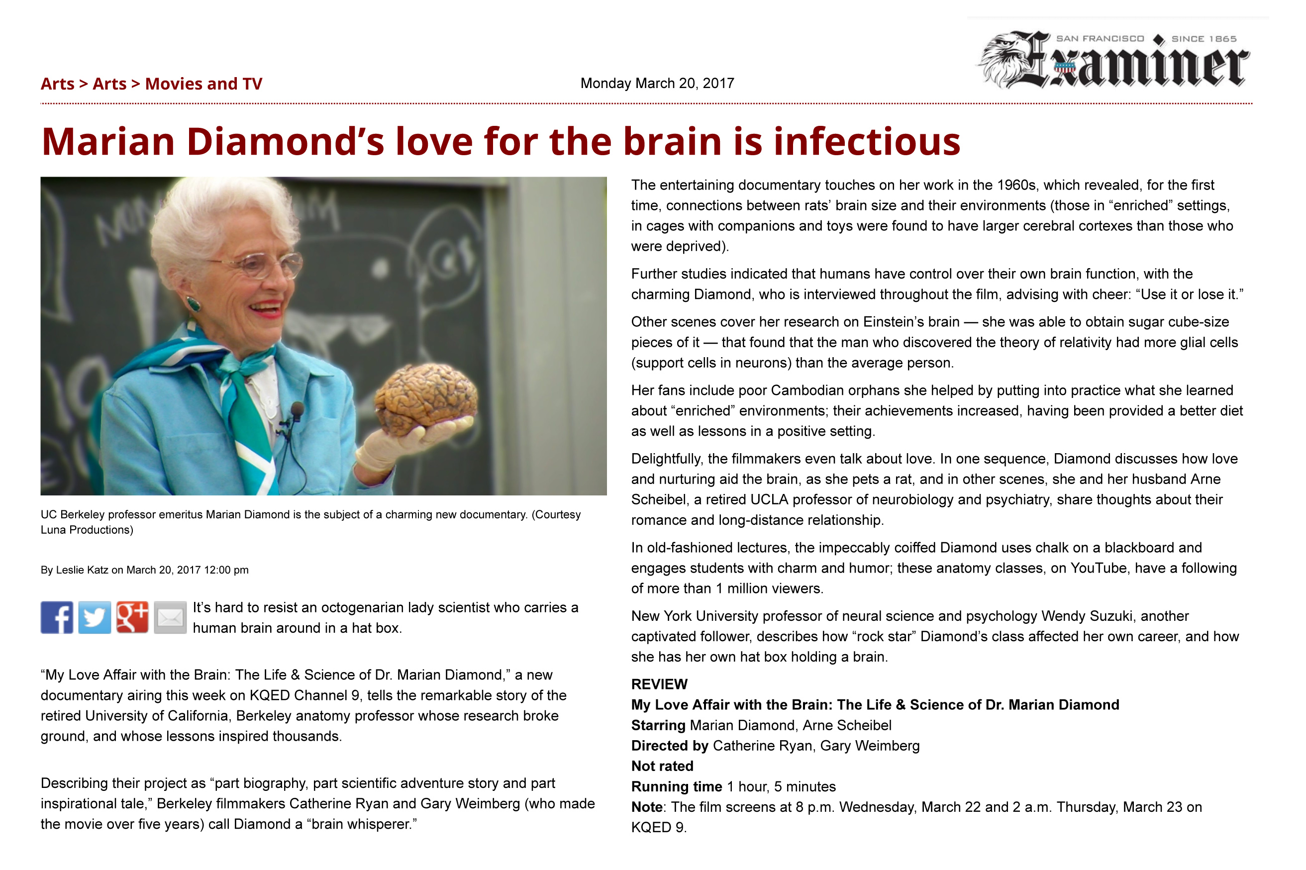 Reviews My Love Affair With The Brain